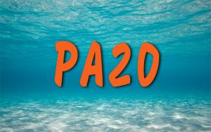Plongeur Autonome 20m