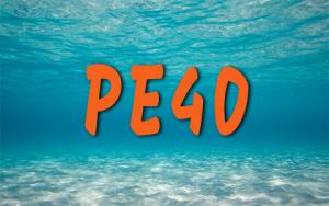 Plongeur Encadré 40m